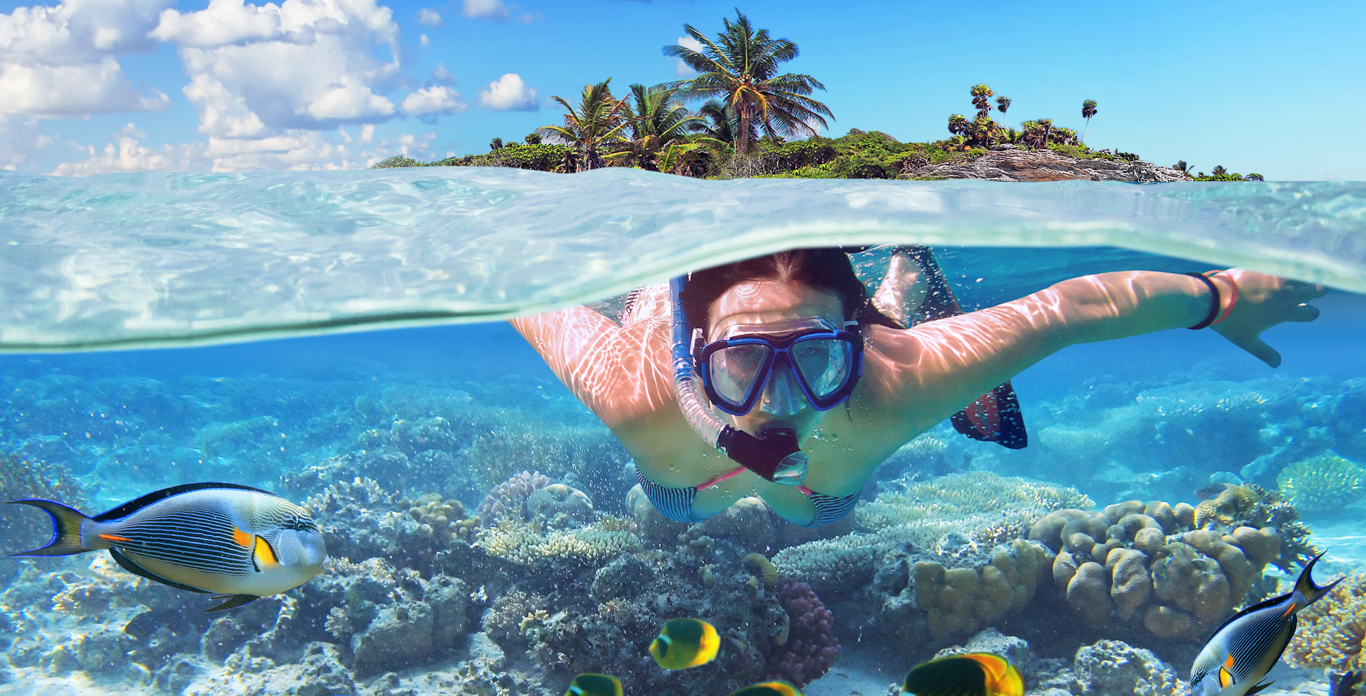 Woman snorkeling in the shallow waters of the Bahamas and Caribbean.