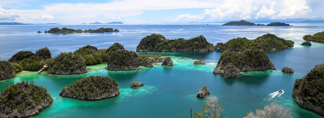 Raja Ampat Liveaboard Charter on Gaia Love